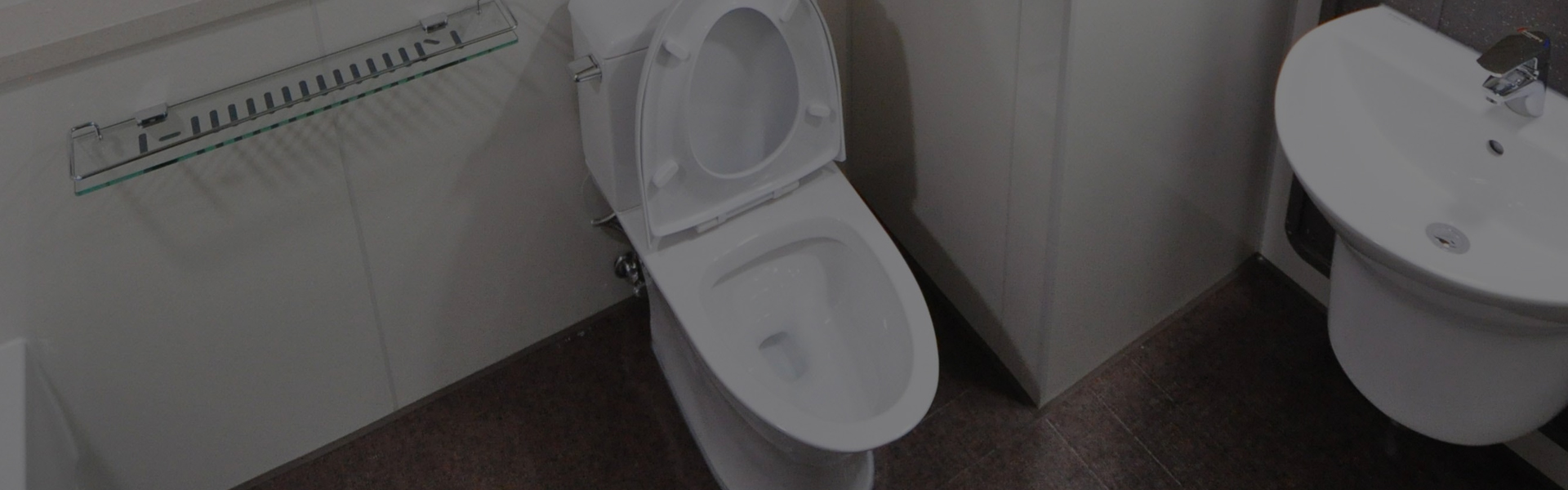 toilet plumbing sydney