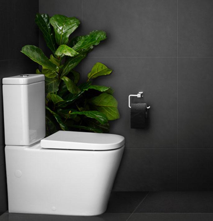 house toilet plumbing